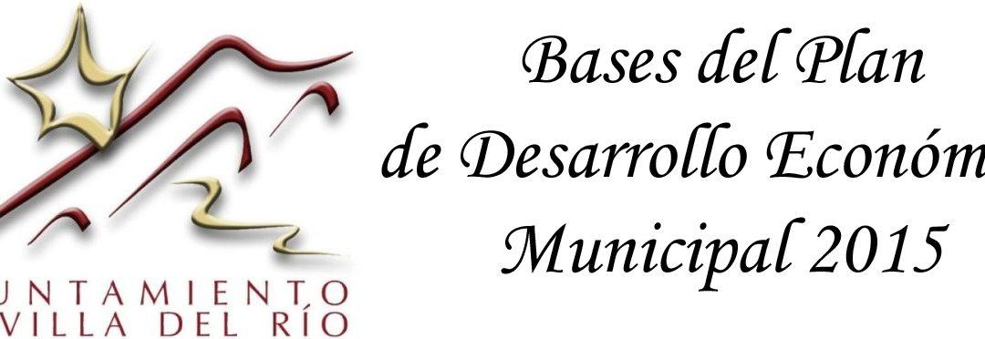 Bases Plan de Desarrollo Económico Municipal 2015