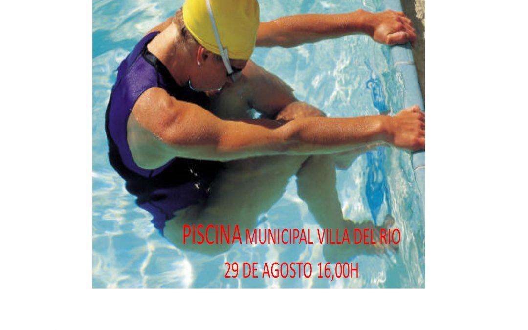 circuito provincial de natacion