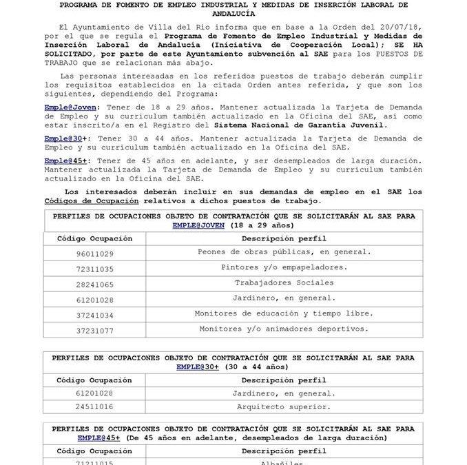 Programa de fomento de empleo industrial y medidas de inserción laboral de Andalucía 1