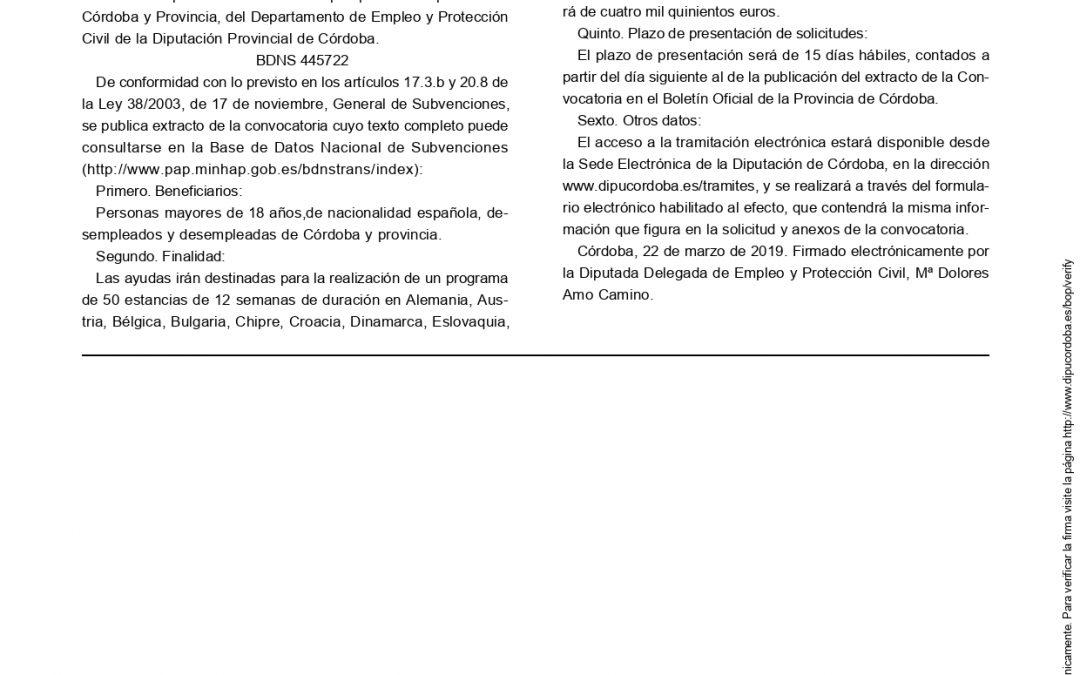 Convocatoria de 50 ayudas para estancias profesionales en países de la Unión Europea para desempleados de Córdoba y Provincia