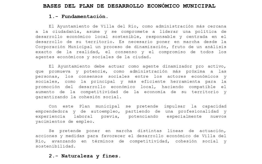 BASES PLAN DE DESARROLLO ECONÓMICO MUNICIPAL