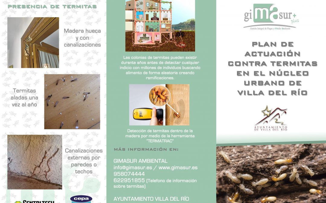 Jornadas Informativas sobre el Plan de Actuación contra termitas