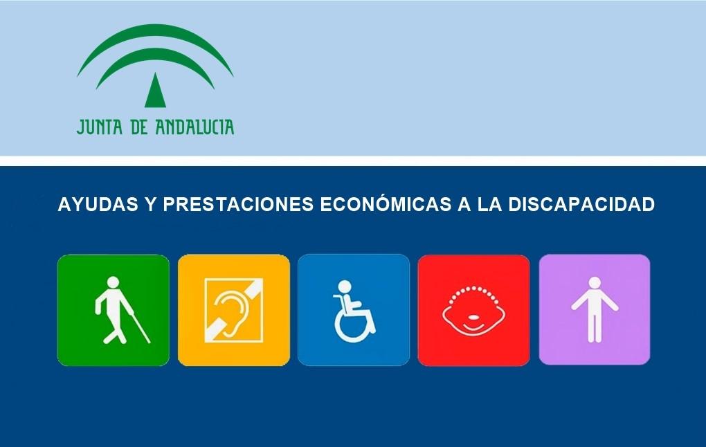 Ayudas y prestaciones económicas a la discapacidad 1