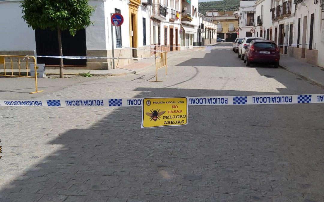 Efectivos de Bomberos y Policía Local retiran un enjambre de abejas 1
