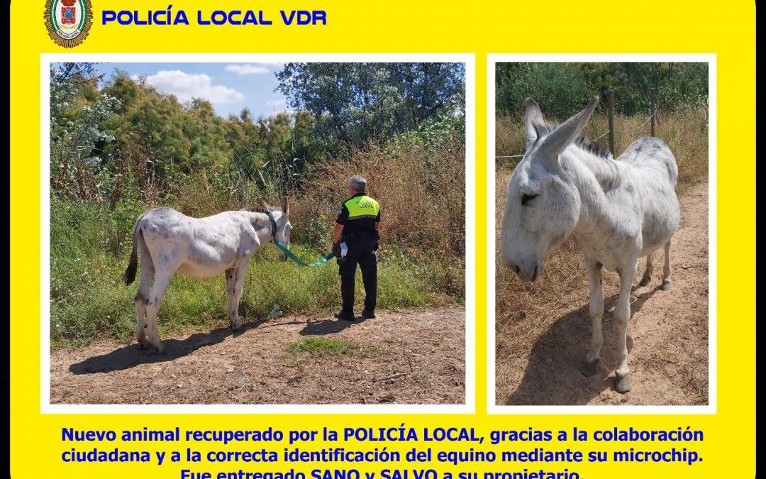 Coronavirus   Policía Local 1