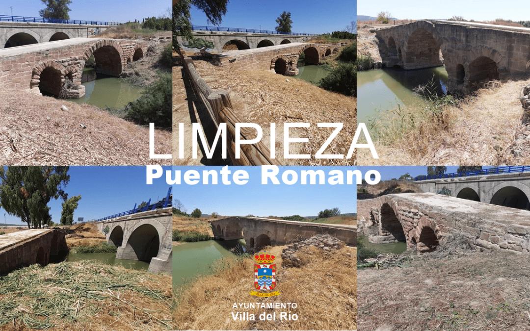 Trabajos de limpieza del entorno del Puente Romano (BIC) 1
