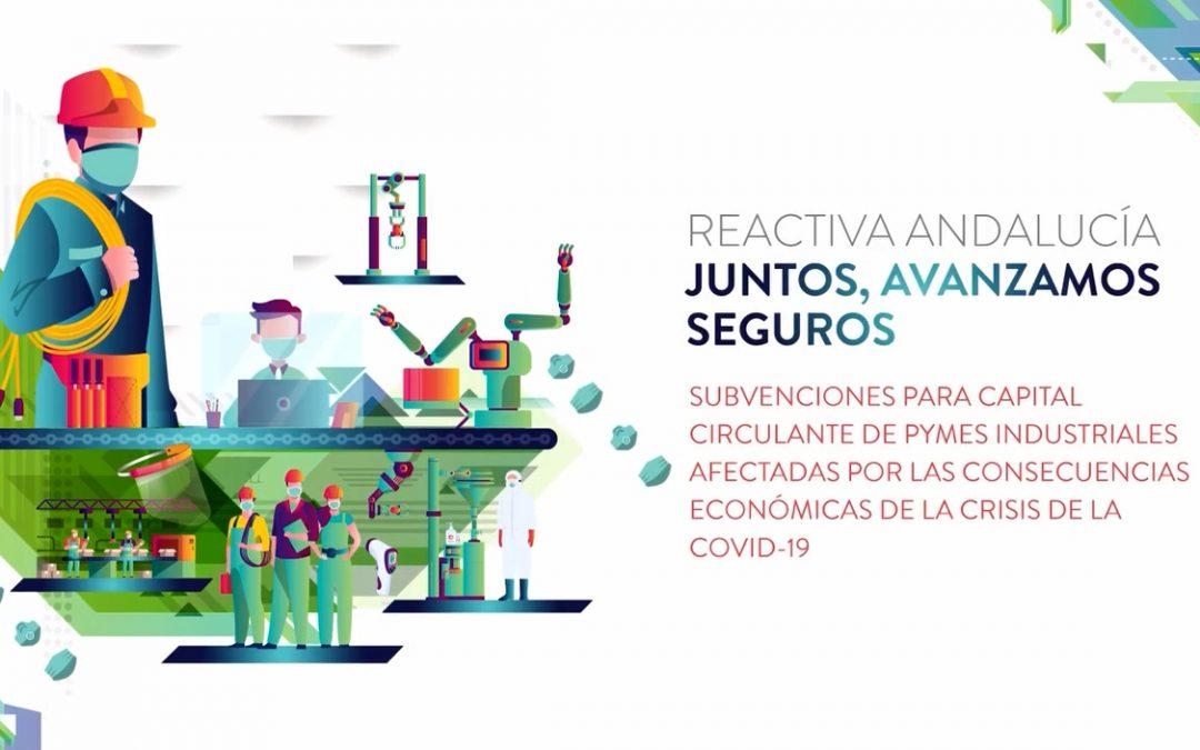 Ayudas a las PYMES industriales afectadas por la COVID-19 1