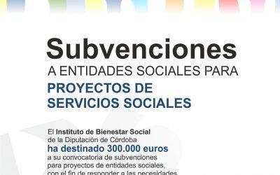 Convocatoria de subvenciones dirigida a entidades sociales para financiar proyectos de servicios sociales