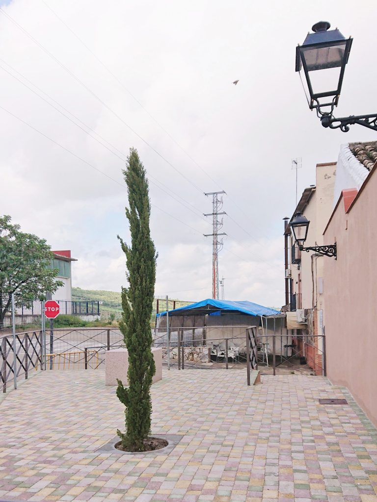 Plaza del Segador | Finaliza la rehabilitación de un espacio público con elemento escultórico 3