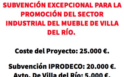 SUBVENCIÓN EXCEPCIONAL PARA LA PROMOCIÓN DEL SECTOR INDUSTRIAL DEL MUEBLE DE VILLA DEL RÍO